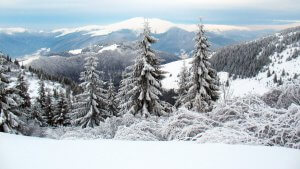 winter-carpathian